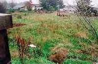 Looking east at the former station site in Castle Douglas.<br><br>[Ewan Crawford //]