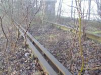 Near to Dalmarnock Station below a section of track suddenly appears complete with Check Rail.<br><br>[Colin Harkins 04/02/2006]
