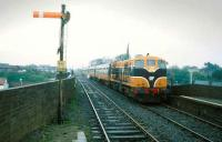 156 brings a train into Balbriggan in 1993.<br><br>[Bill Roberton //1993]