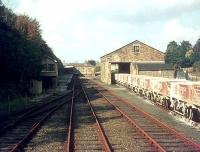 Empty clayhoods for Wenford Bridge stand alongside Bodmin General station in 1982.<br><br>[Ian Dinmore //1982]