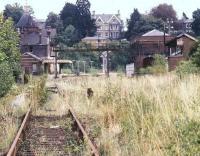 BRITISH RAIL RAILWAY STEAM PHOTO 1960/'S-WAINWRIGHT 31005 TUNBRIDGE WELLS WEST 63