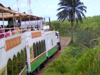 The St Kitts narrow gauge Scenic Railway, with 6 double-deck carriages using the former sugar cane plantation lines. The man in the green and white shirt is part of a trio singing traditional songs to the passengers. [Bit like the last train to Cambuslang on Sat night: Ed.]