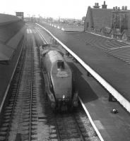 4498 <I>Sir Nigel Gresley</I>, fresh from Crewe Works, heading north through Carnforth in May 1968 bound for Carlisle. The A4's ultimate destination was Glasgow, where the locomotive was due to haul an A4 Society special from Central on 20 May. [see image 20388]<br><br>[David Spaven //1968]