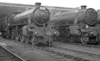 B1 61051 stands alongside Black 5 45102 on a busy Blackpool Central shed (24E) in 1962. The 5 was a resident but the B1 looks like one of the many locomotives that visited 24E after working into Blackpool Central on excursion trains at that time, in this case probably from the Sheffield area. The shed eventually closed in 1964 along with the large station it was built to serve [see image 30284] and much of the area is now a car park.<br><br>[K A Gray 23/09/1962]