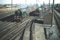 B1 no 61146 is held at the exit from Craigentinny sidings on 30 September 1959 with a train of empty coaching stock bound for Waverley. Meantime A2 Pacific no 60534 <I>Irish Elegance</I> runs past with a westbound train on the main line.<br><br>[A Snapper (Courtesy Bruce McCartney) 30/09/1959]