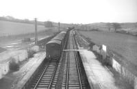 Looking south towards Hawick from the footbridge at Belses station in the mid sixties as a Millerhill - Carlisle freight heads south behind an EE Type 4 locomotive.<br><br>[Robin Barbour Collection (Courtesy Bruce McCartney) //]