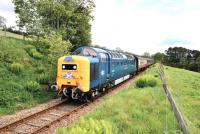 Sparkling Deltic no 55 022 <I>Royal Scots Grey</I> climbs the 1 in 50 gradient between Fodderty Junction and Achterneed on 28 May hauling the SRPS <I>Kyle Crusader</I> railtour to Kyle of Lochalsh.<br><br>[John Gray 28/05/2011]