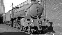 B1 61010 <I>'Wildebeeste'</I> on shed at Aintree on 14 April 1962. <br><br>[K A Gray 14/04/1962]