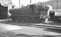 Shed scene at Abercynon in August 1960. Ex-GWR 0-6-2T no 5699 centre stage.<br><br>[K A Gray 12/08/1960]