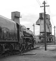 Sparkling condition aside, this view of Black 5 No. 44871 at Carnforth Shed could almost have been taken during the BR steam era. In reality the year is 1977 and the loco has already spent the best part of nine years in preservation.<br><br>[Bill Jamieson 08/05/1977]