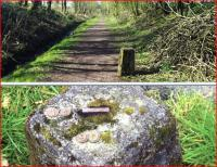 The top picture shows a trackside relic just south west of Castle Douglas - view looking west. Below is the top surface of one of a pair of them standing at the sides of a path within Threave Gardens, complete with metal numbers. Both photographs taken on 1 April 2012. [See image 41753 for explanation]<br><br>[Colin Miller 01/04/2012]