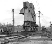 The coaling plant at Carnforth on 8th May 1977.<br><br>[Bill Jamieson 08/05/1977]