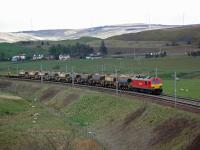 Northbound Carlisle Yard to Mossend Yard freight approaches Abington. (Plus lots of sheep with very cute lambs!)<br><br>[Beth Crawford 30/04/2012]