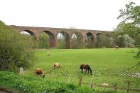 View across fields towards the 1875 Armathwaite Viaduct in May 2006. <br><br>[John Furnevel 06/05/2006]