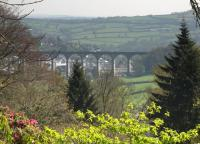 View towards Calstock Viaduct in the Spring of 2011. The 850' long 12-arch viaduct, completed in 1908, carries trains on the Gunnislake branch between Bere Alston and Calstock 120' above the River Tamar.<br><br>[Ian Dinmore 19/04/2011]