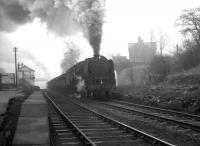 A trainload of iron ore on its way from Tyne Dock to Consett photographed passing through Beamish station on a February morning in 1964. Hard working 9F 2-10-0 no 92097 heads the procession, while bringing up the rear is WD 2-8-0 no 90434, having joined the train at South Pelaw. <br><br>[K A Gray 15/02/1964]