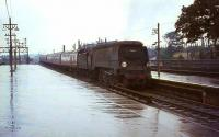 West Country Pacific no 34102 <I>Lapford</I> with a train at Basingstoke on a rainy day in August 1964.<br><br>[John Robin 24/08/1964]