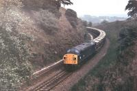 Split-headcode EE Type 4 40142 brings a rake of westbound <I>Presflo</I> hoppers from the Hope Valley line through the cutting immediately east of Chinley North Junction in 1978.  <br><br>[Mark Bartlett //1978]