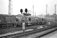 Photograph taken from the adjacent platform of Bristol Temple Meads station on 14 March 1970, showing blue liveried NBL diesel-hydraulic D6327 and green classmate D6348 on Bristol Bath Road MPD. To the left is EE 350hp shunter D3990, with an unidentified Hymek lurking in the background.<br><br>[Bill Jamieson 14/03/1970]