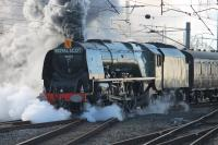 46233 <I>Duchess of Sutherland</I> leaves the Carnforth loops on 31st January with a <I>Cumbrian Mountain Express</I> charter, its first outing of 2015. The train had started from Euston and was hauled to Carnforth by two WCRC Brush Type 4s due to the failure of the booked electric locomotive, 86259 <I>Les Ross</I>. <br><br>[Mark Bartlett 31/01/2015]