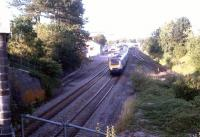 Castle Cary 28/07/2011