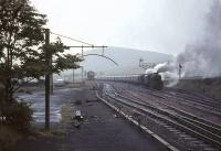 A pair of Black 5s, led by no 45359, held in the up loop at Abington on a wet and windy 30 July 1966 with a lengthy train of empty stock.  <br><br>[John Robin 30/07/1966]