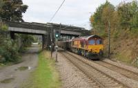 Freight over the Settle and Carlisle has been greatly reduced in 2016 by the Armathwaite landslip closure but the Newbiggin gypsum trains still run. DBS 66021 is seen passing the new station at Apperley Bridge with a train for the yard at Milford West on 21st October 2016. <br><br>[Mark Bartlett 21/10/2016]
