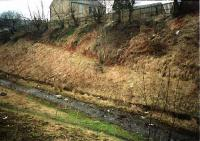 The site of this halt which had timber platforms. The site is now overgrown. [1988?]<br><br>[Ewan Crawford //]